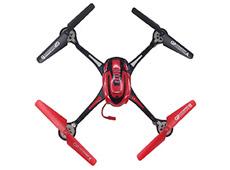 F1C WildGrow Drone